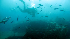 (Andurinha) Tags: redsea diving wreck buceo thistlegorm pecio marrojo