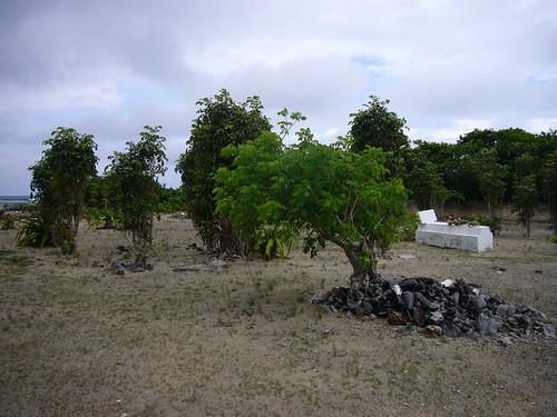Betsy Bay Graveyard