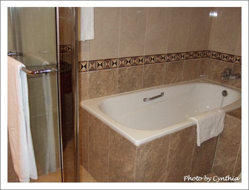 浴缸和淋浴間