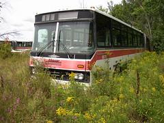 8876 front (joe best) Tags: bus ttc iii ottawa orion urbanruins junkyard scrapyard articulated octranspo ikarus