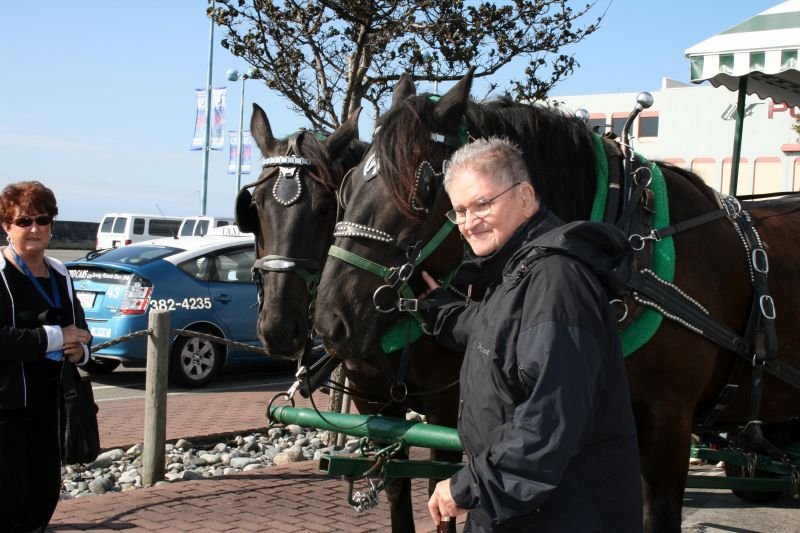 Dad with Horses