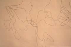 documenta 12 | Trisha Brown / Geneva, Handfall | 1999 | Fridericianum