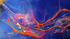 string driven thing (perygoing with the flo-viz) Tags: light abstract motion colour art water ink flow spread movement pattern space fluid visualization dynamics radial viz inkscape matter fluiddynamics patterning scientificart sciart inksplosion inkpatterns flowvisualization flovis floviz radialspread inkinwaterphotography chronoscapes inksplosions flowviz