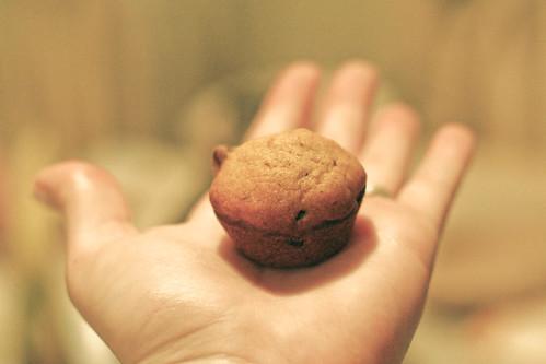 Muffin...or nubbin?