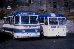 Midland MPC77 MN5 Glasgow (Guy Arab UF) Tags: buses scotland coach nimbus glasgow tiger royal 1956 alexander midland albion 1953 leyland coronation buchananstreetbusstation scottishbusgroup psu115 mn5 mpc77 ems532 jms392 mr9l
