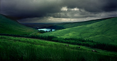 Pen Y Fan, Brecon Beacons With Wild Ponies (steffanmacmillan) Tags: road lake colour film grass wales fauna forest bravo skies moody view cymru reservoir negative vista greenery fujifilm brecon heavens wildponies reala coniferous a470 naturalmente naturesfinest parcio outstandingshots breconbeaconsnationalpark gs645s aplusphoto wildwales brillianteyejewel landscapewelshlong ulimatemountainshots