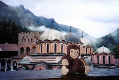 Monkey Monastery