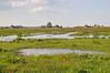 Rijperweg - Uitdam (BrenPict) Tags: holland rural 2010 waterland uitdam rijperweg