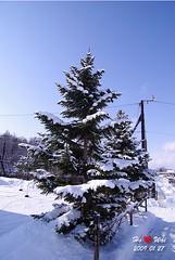 0127_1048_IMGP8381 (Shun Daddy) Tags: travel winter japan landscape star hokkaido pentax zoom scenary    2009   asahikawa  k10d pentaxk10d da1650 da1650mmf28