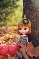 i ♥ autumn.
