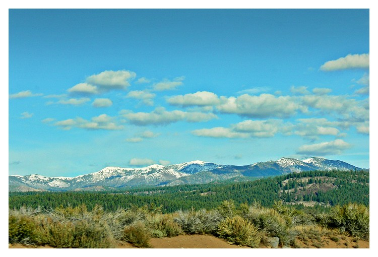 Jessica Jacob Photography - :On The Road To Lake Tahoe