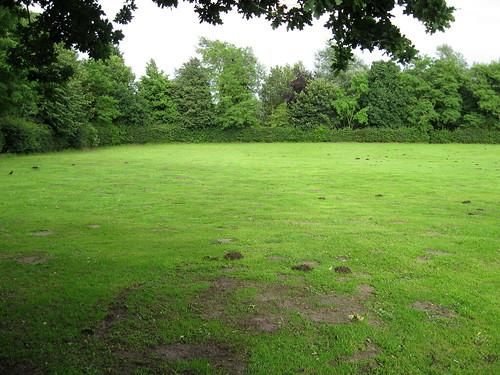 The Unsung Park