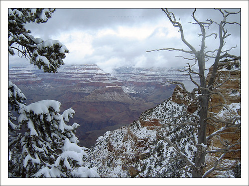 arizona- grand canyon 7