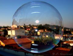 Macro-Transparncias... (Jorge L. Gazzano) Tags: flickr arte group explore challenge duetos flickrchallengewinner