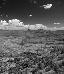 Tonto National Forest - Ansel Adams Style