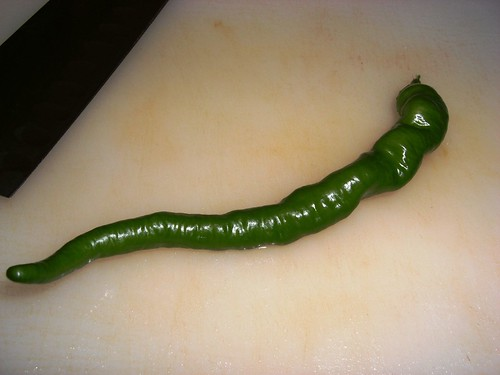 Portugese Hot Pepper