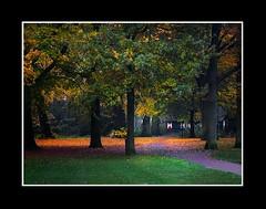 Herfst (Theo Kelderman) Tags: autumn haarlem netherlands canon bomen herfst nederland 2010 bladeren haarlemmerhout theehuisje theokeldermanphotography herfstindestad