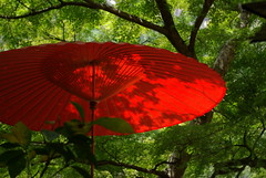 Japanese red umbrella (naoK) Tags: trip red green pentax explore yamanashi kofu shosenkyo da1855mmf3556al k10d