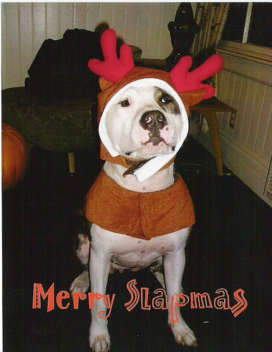 Slapmas Card