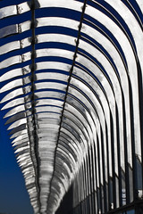 Don't climb ([Kantor]) Tags: nyc blue sky usa ny newyork metal azul skyscraper canon focus dof manhattan cielo esb empirestate railings nuevayork rascacielos kantor verja 400d