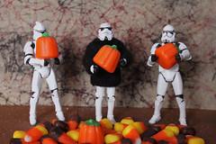 Stan, Steve, and Stu Pick Halloween Pumpkins to Carve
