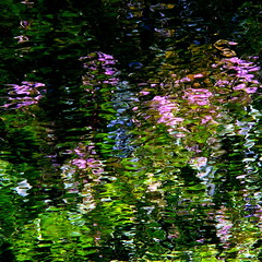 Giverny spirit! (Denis Collette...!!!) Tags: flowers canada art fleurs painting photography photo bravo photographie spirit rivire photograph qubec monet giverny photographe me magicdonkey deniscollette wildriver world100f visionqualitygroup visionquality100
