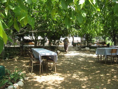 Lunch, Chez Mestan