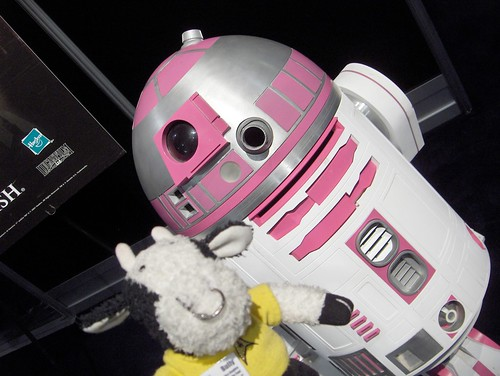 Me and R2-KT