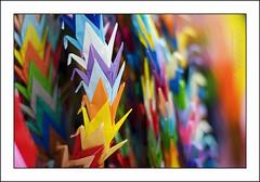 japan paper photography photo origami colours foto fotografie wwii hiroshima cc photograph creativecommons nippon af papercranes flickrphoto sadakosasaki flickrimage cranebird coloursofpeace flickrphotography afphotography vincentvanderpas archetypefotografie