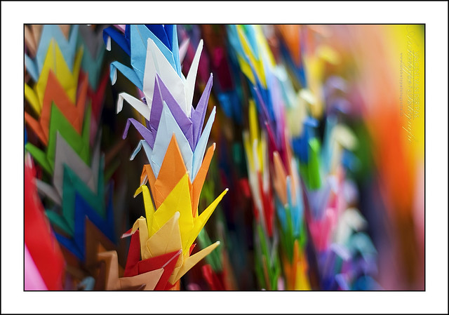 29146523a9848e japan paper photography photo origami colours foto fotografie wwii  hiroshima cc photograph creativecommons nippon af papercranes