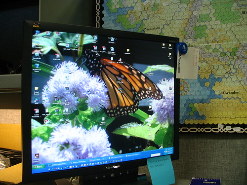 Monarch Monitor