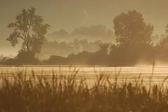 sunrise 3 (local paparazzi (isthmusportrait.com)) Tags: mostviewed localpaparazzi redskyrocketman