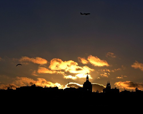 golden clouds, airplane and the bird