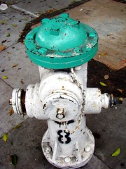 green topped fire hydrant in San Francisco