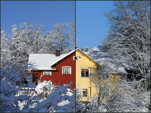 Winter vs Winter
