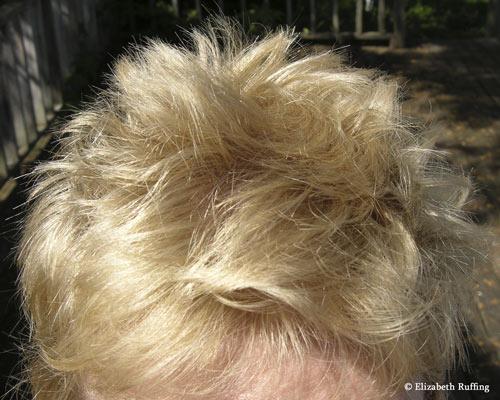 Elizabeth Ruffing's hair