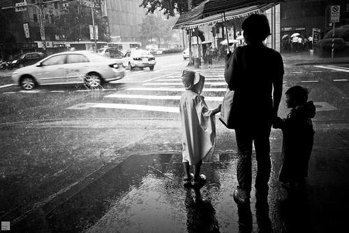 台北。雨。滂沱。