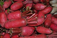 Organic food mela