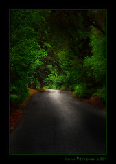 The Road Less Traveled (There is No Spoon Photography) Tags: road trees green canopy butterfieldcanyon abigfave canon400d