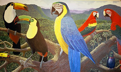 Painting: Tropical Rainforest Birds (Floyd Muad'Dib) Tags: trees plants plant tree bird art birds animal animals america forest painting insect geotagged toucan rainforest paint acrylic hummingbird united north paintings beetle insects exotic jungle tropical vegetation hummingbirds states foreign beetles macaw forests acrylics acrylicpaint macaws toucans tropicalrainforest rainforests jungles acrylicpaints tropicalpainting rainforestbirds tropicalpaintings tropicalrainforestart tropicalrainforestpictures