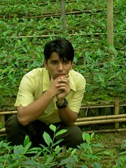 Srimongal Tea - Greenhouse (Nubsy) Tags: bangladesh srimongal