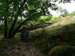P1030155.jpg (airwaves1) Tags: 1000islands stlawrenceriver july282007 yeoisland