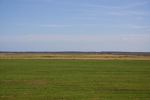 The Big Nothing - Halvergate Marshes 3