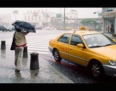 Rainy Day (It's Stefan) Tags: taiwan rain rainy taxi streetlife umbrella peace zebrastreifen zebra crosswalk girl people traffic tainan 1on1urbanphotooftheweek 1on1urbanphotooftheweekseptember2007 fiveflickrfavs superbmasterpiece yellowcab yellow summer      regen pluie pluvial lluvia street walking 1507 asia  roc ilha  asien asie asien republicofchinataiwan ilhaformosa square crossroad formosa madeintaiwan  stefanhchst  stefanhoechst