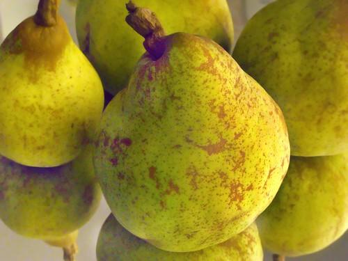 Pears by Harold Davis