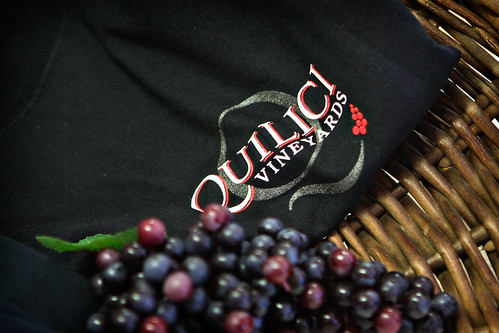 Quilici Vineyards-2