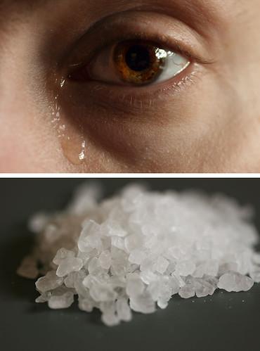 Week 30: Salt