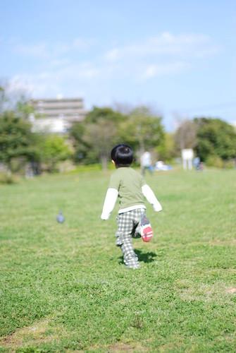 Spring Day Fujisawa