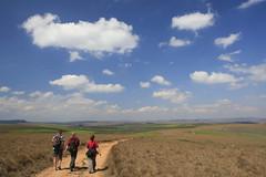 Nyika Plateau