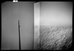 Wichita Lineman (annabelletexter) Tags: camera blackandwhite field rural miniature telephone sub country line falcon wichita 127film lineman